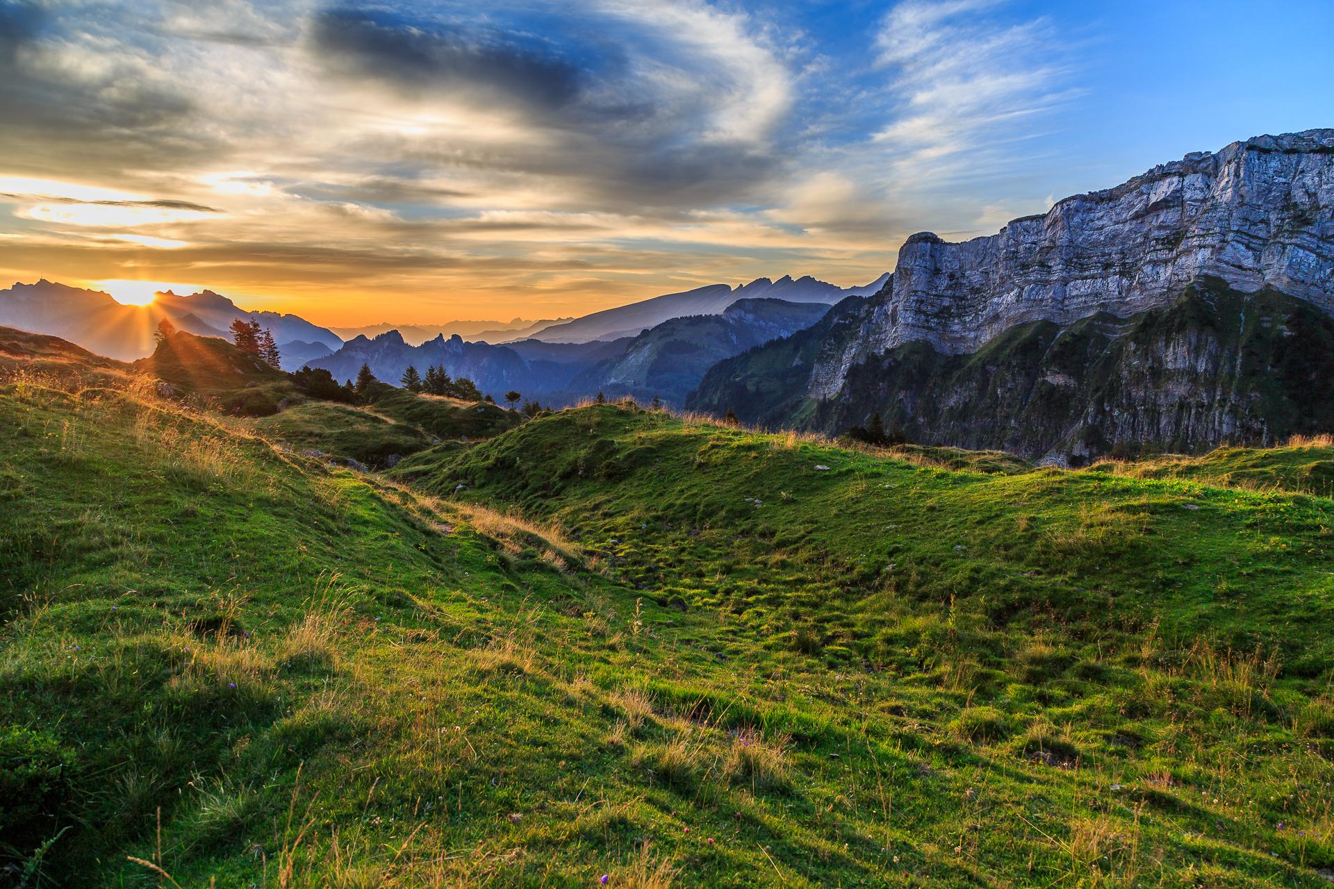 Bergsommer-Alp