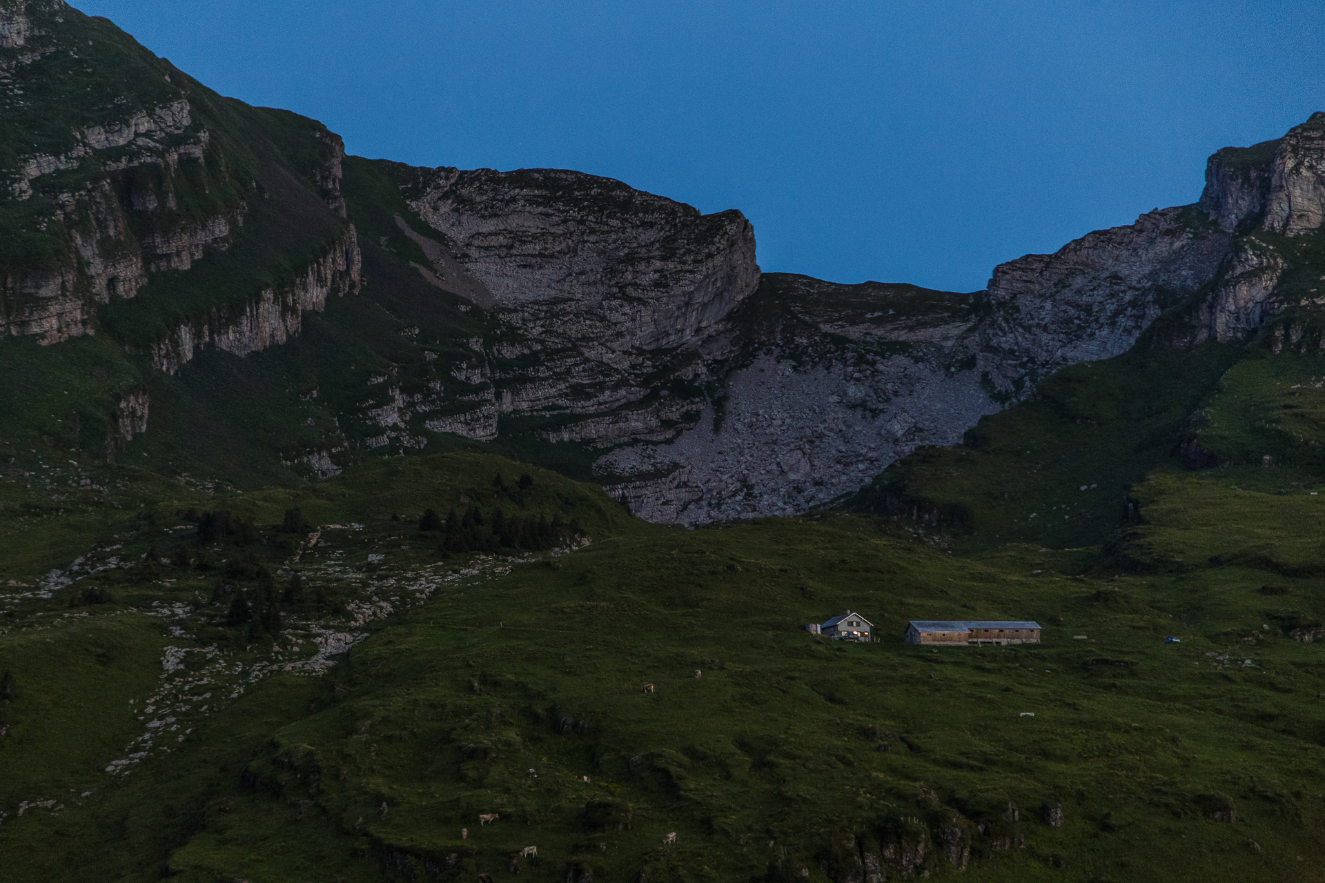 Vordere-Selunalp-Alphuette