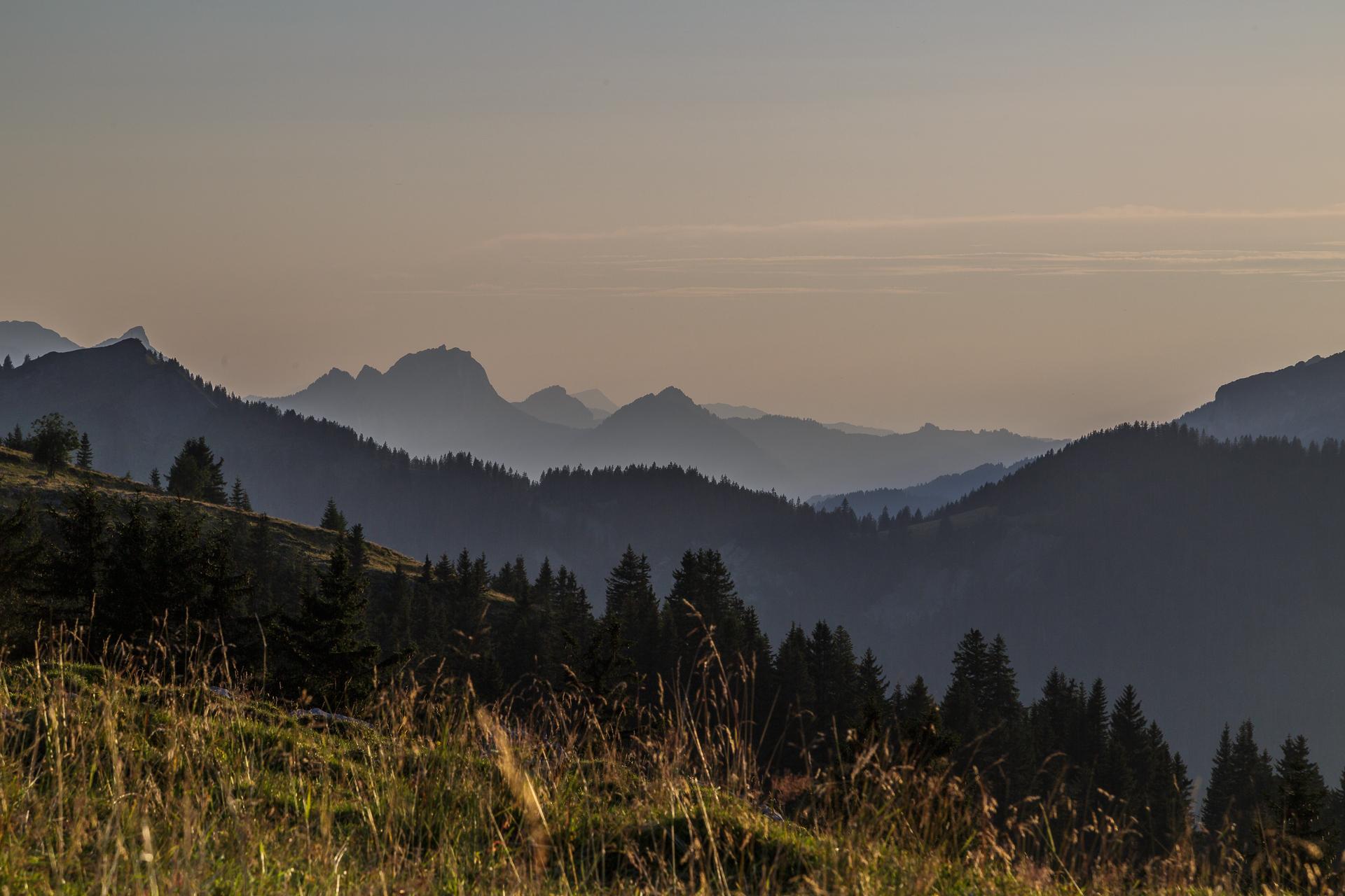 Vordere-Selunalp-Toggenburg