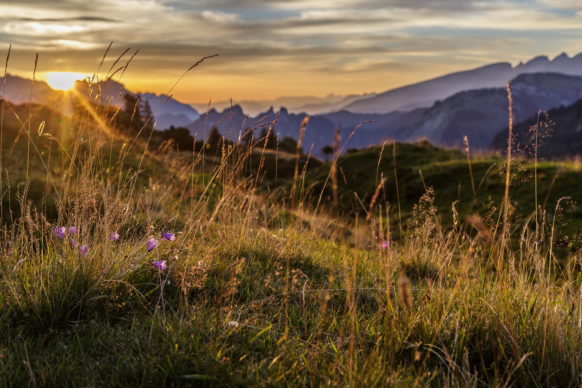 zAlp-Sonnenaufgang