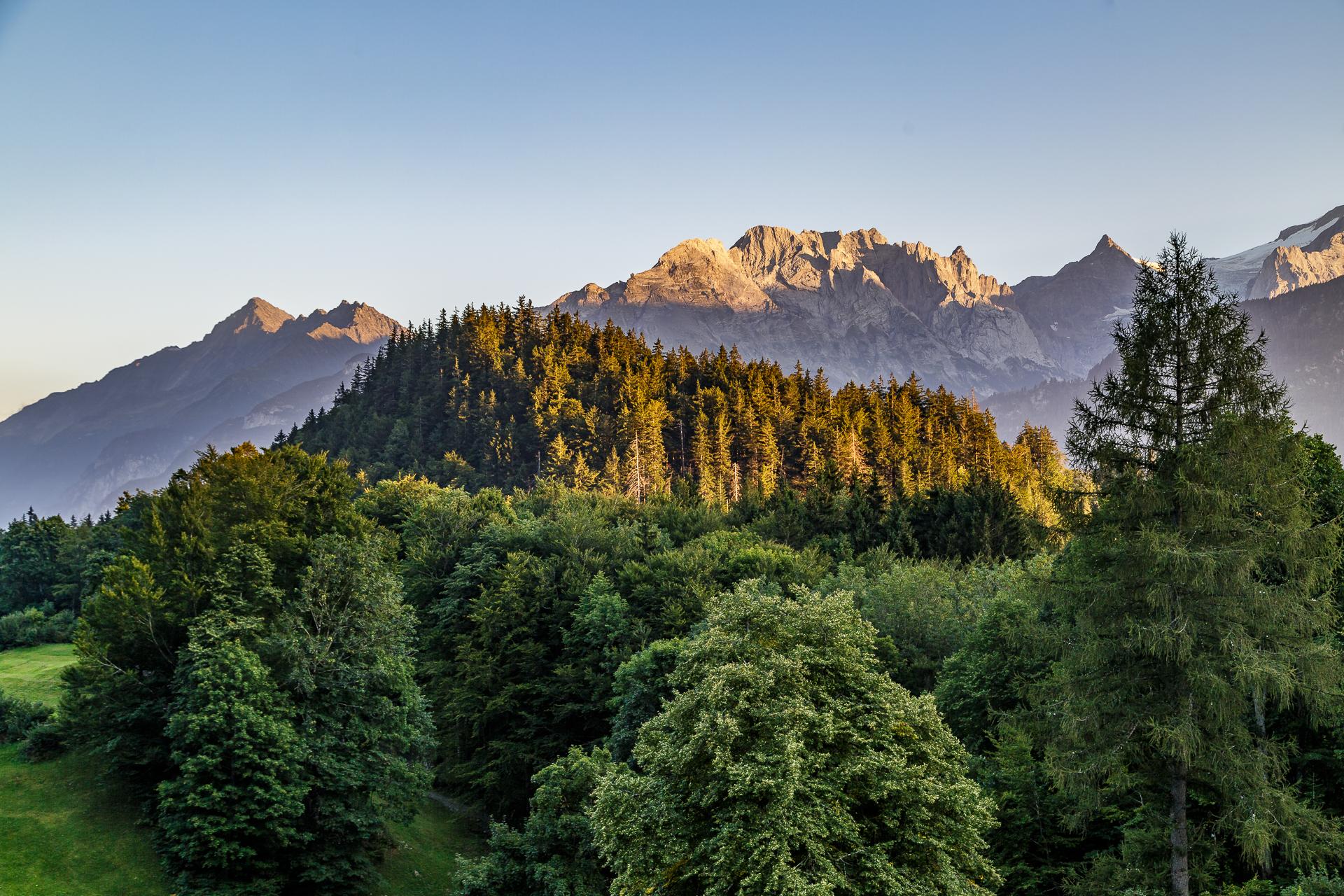Aussicht-Hotel-Wetterhorn