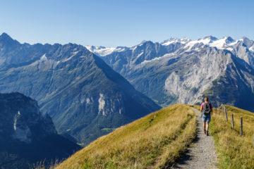 Insta-Sommer: Rück- und Ausblick