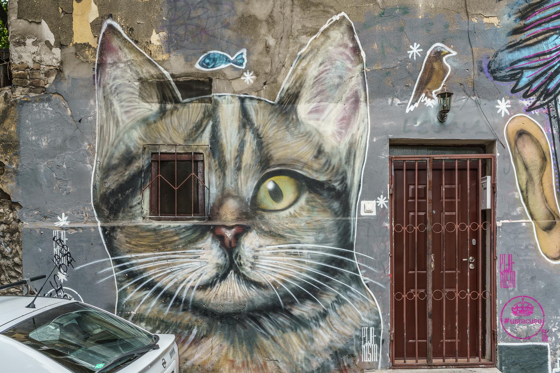 Savamala-Belgrad-Streetart-3
