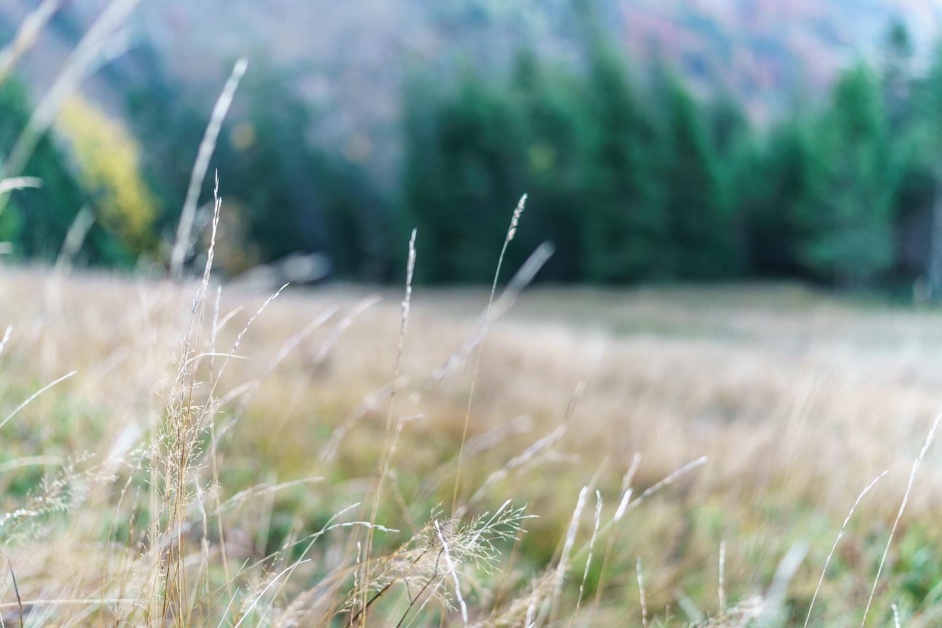 Aeugsten-Herbstwanderung