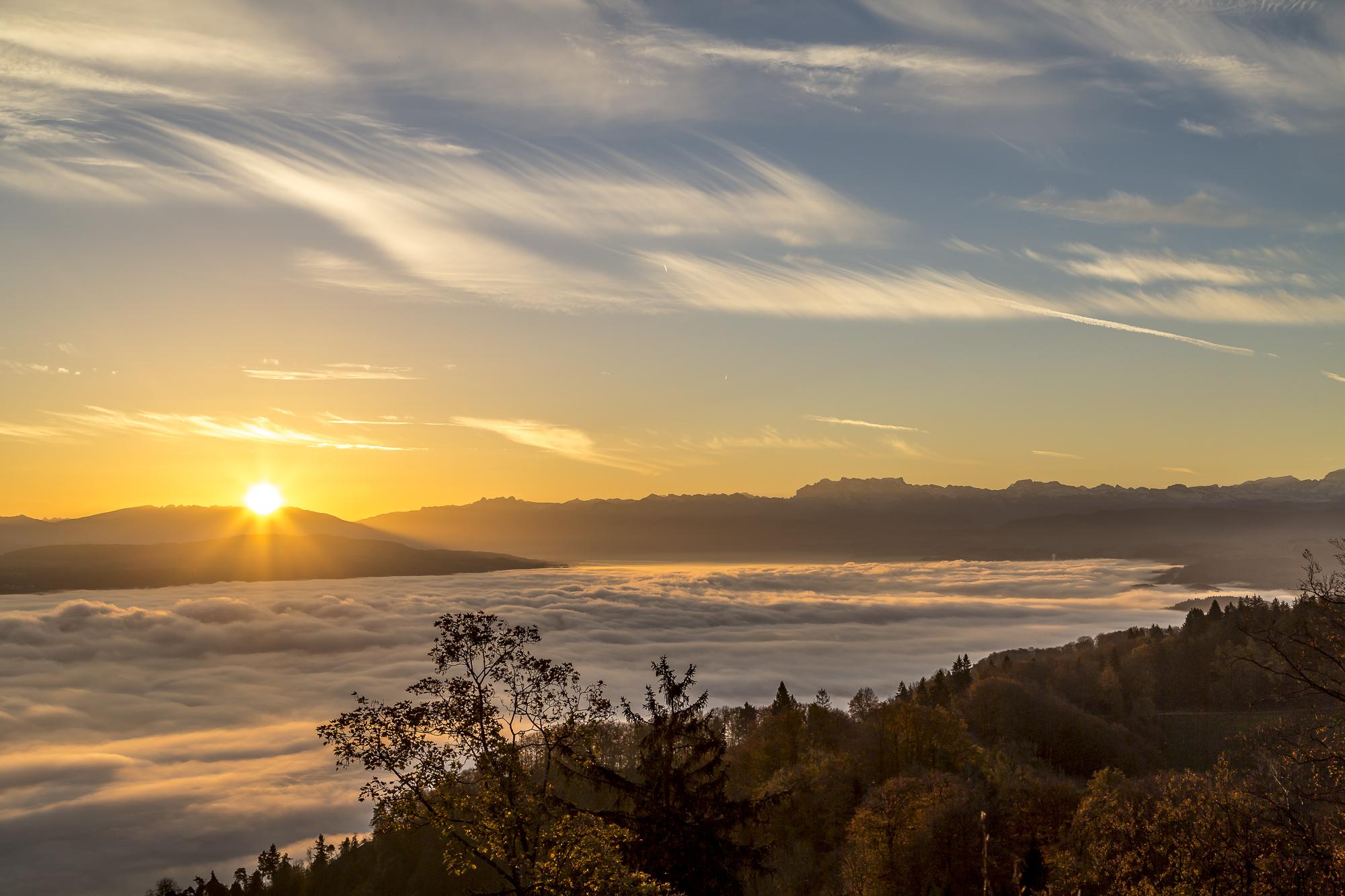Uetliberg-Sonnenaufgang