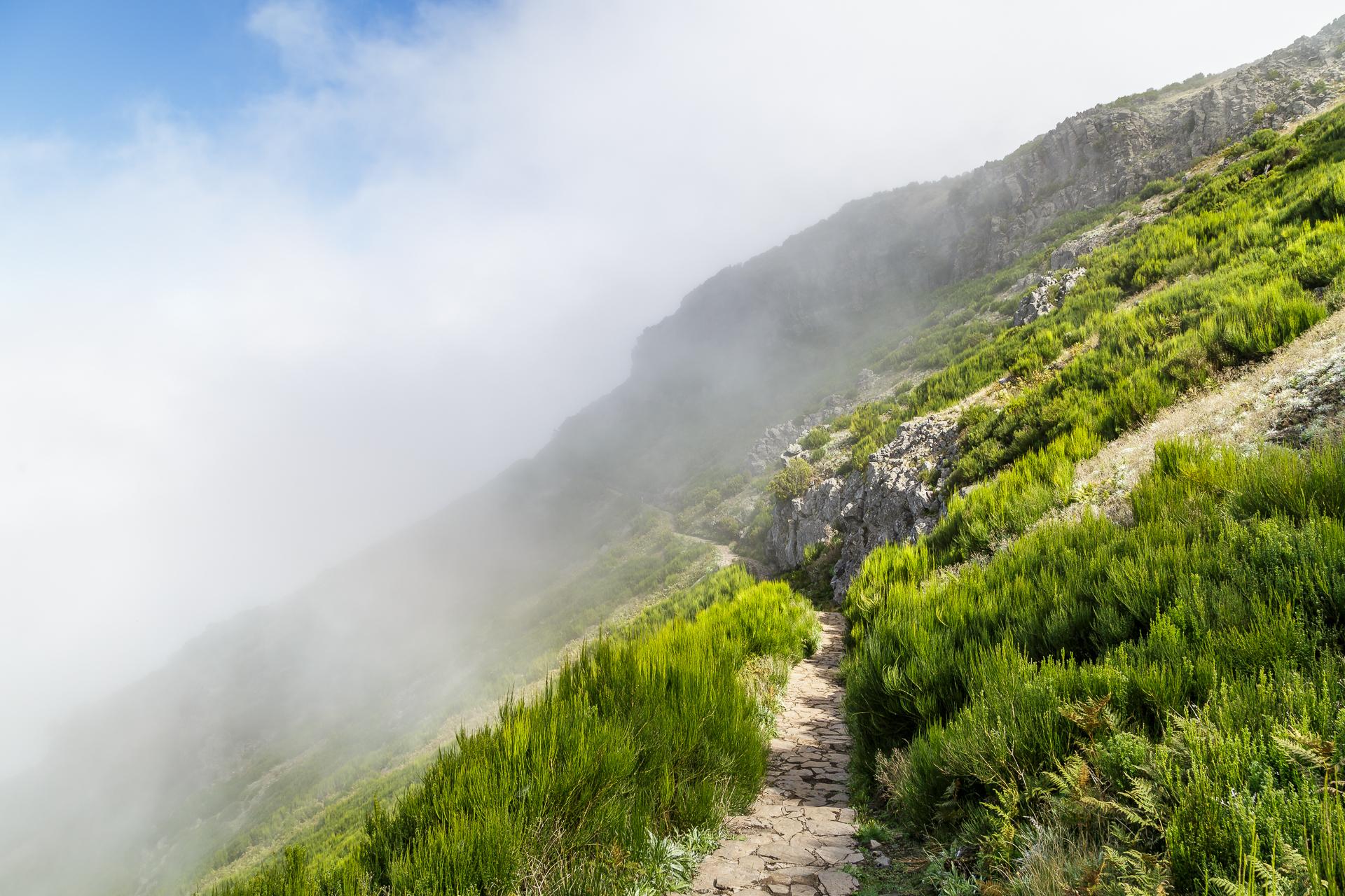 madeira-Berge-Nebel