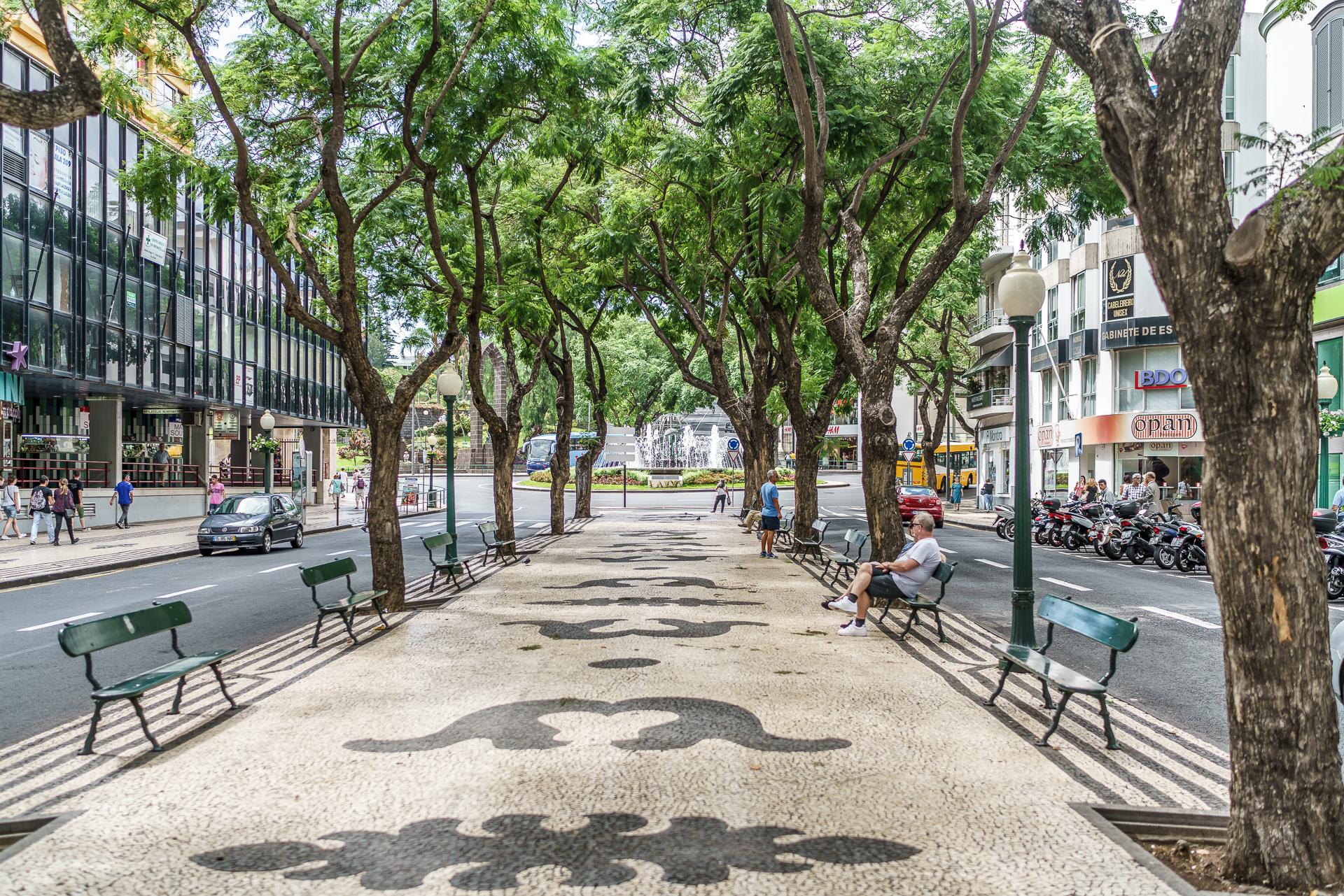 Avenida-Arriaga-Funchal