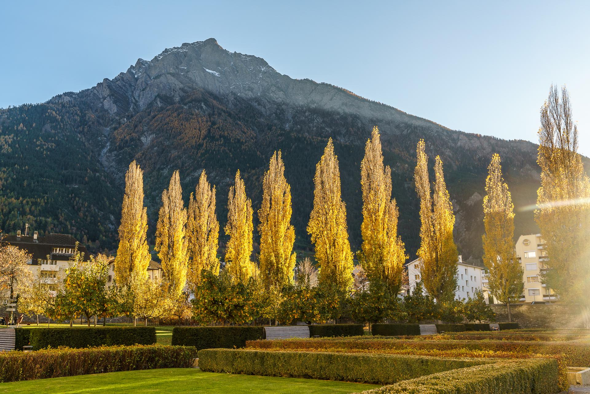 Brig-Wallis-Herbst