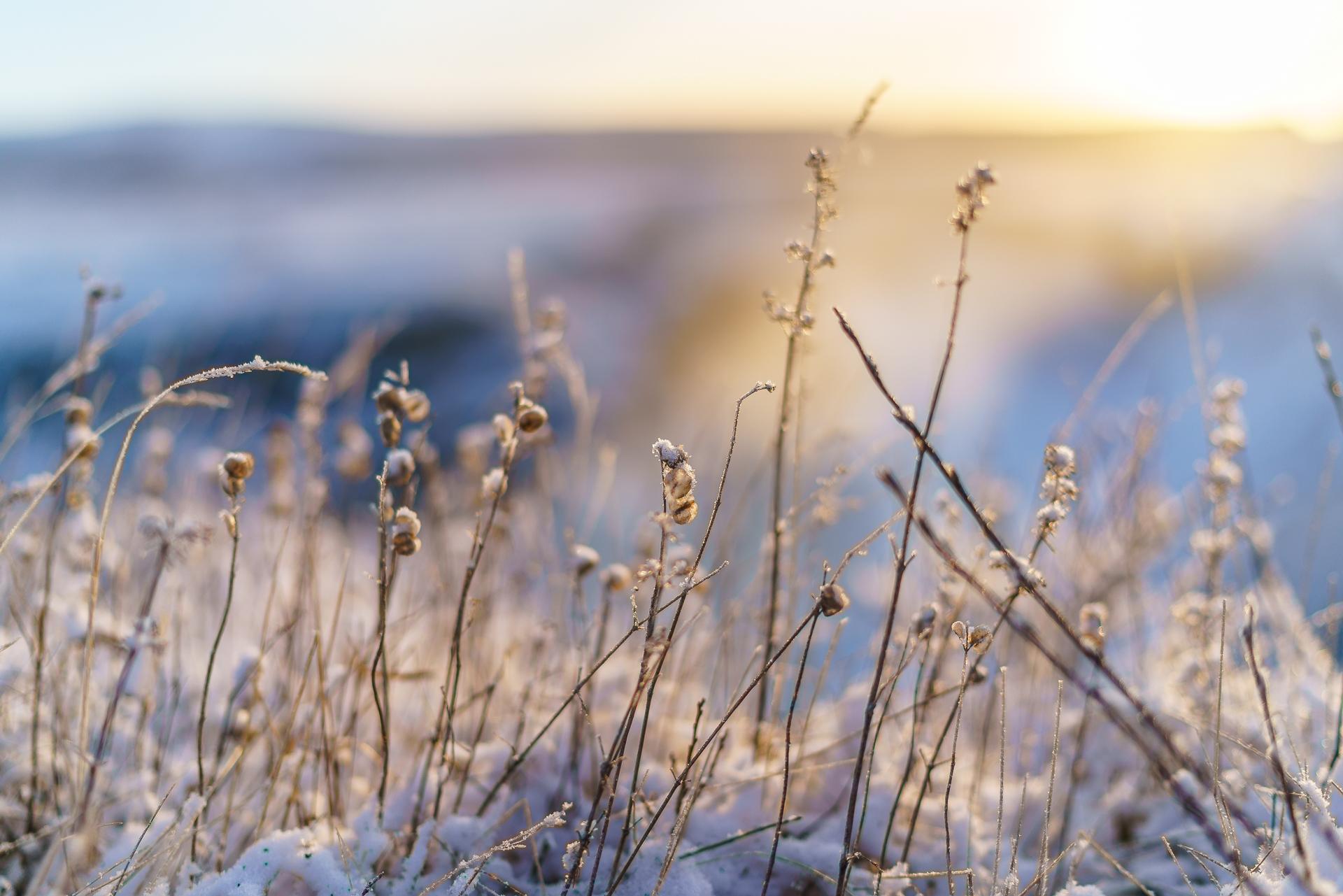 Island-Winterstimmung