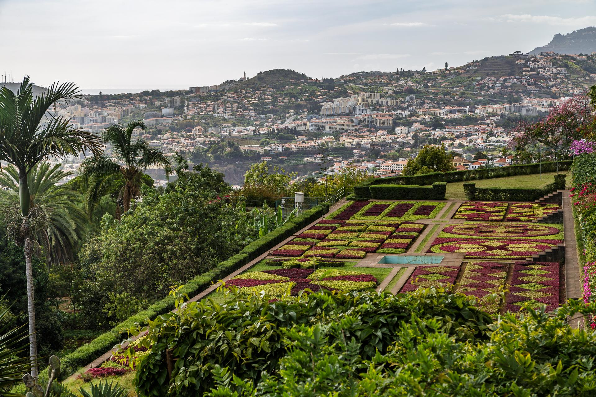 Jardim-Botanico-Funchal-1