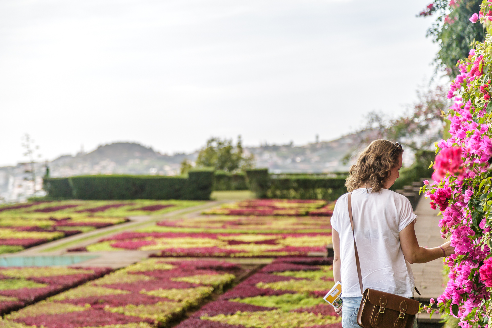 Jardim-Botanico-Funchal-4