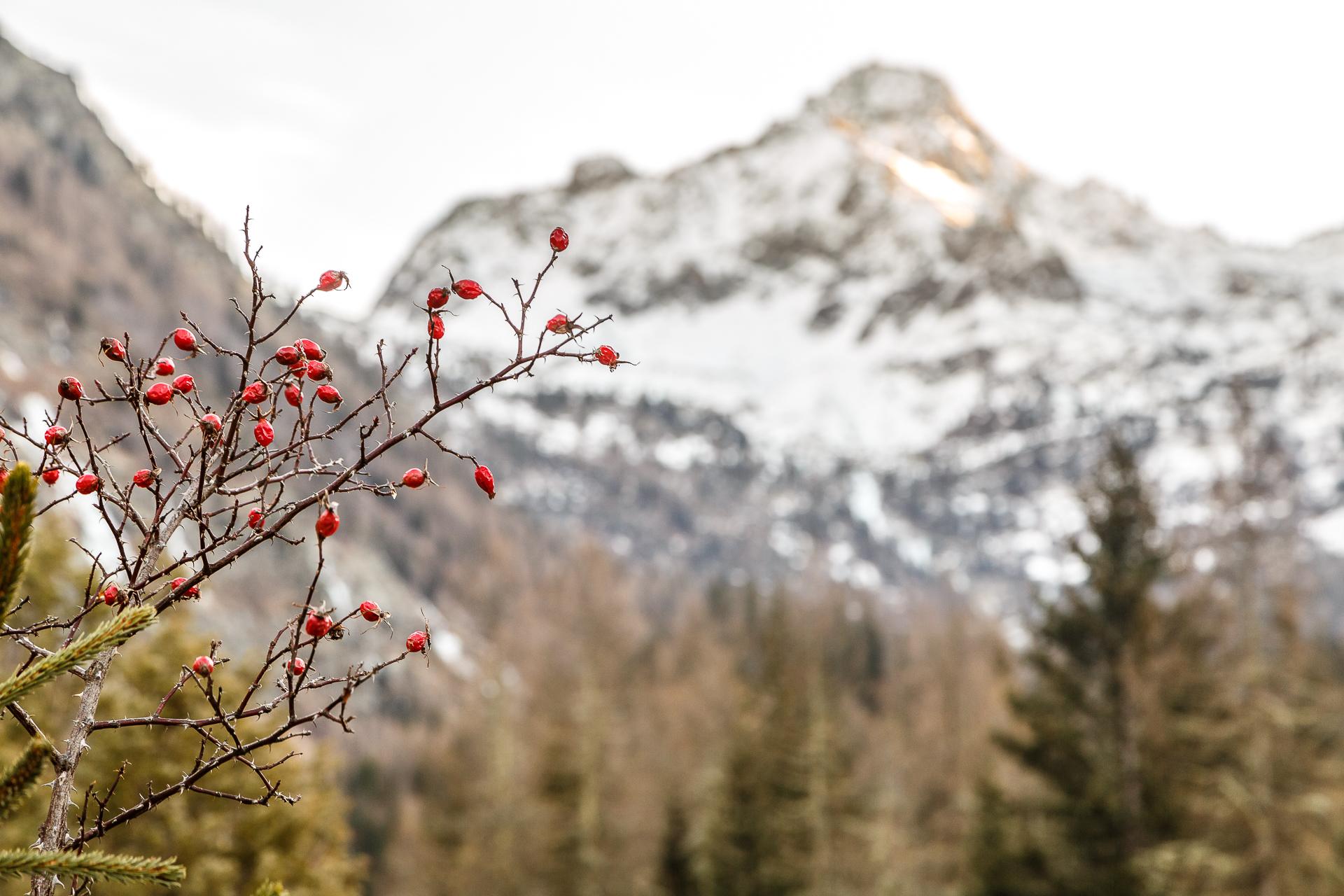 La-Joux-Aostatal