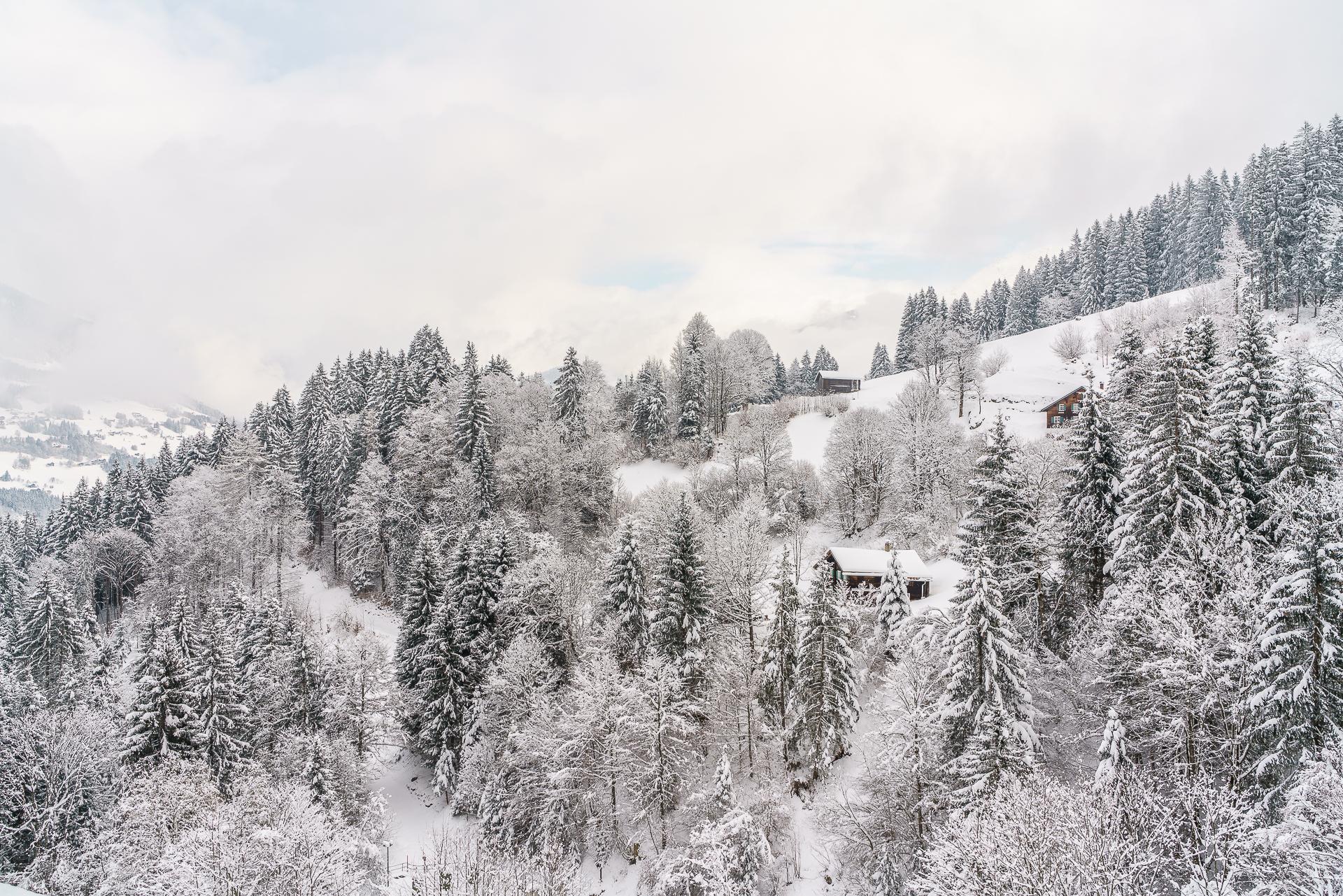 Schneeschuhtour-Latschau-1
