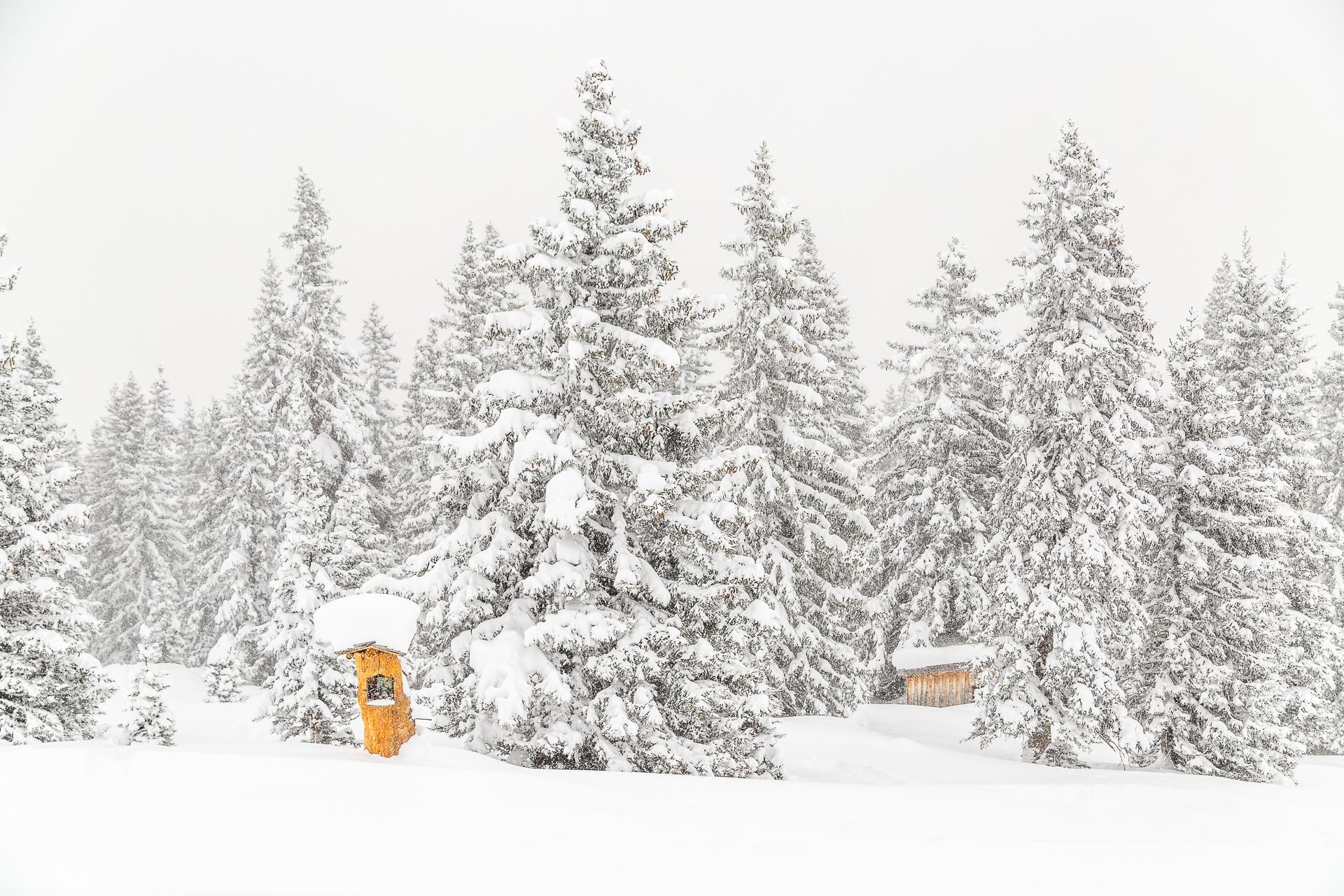 Skigebiet-Gargellen-Montafon-2