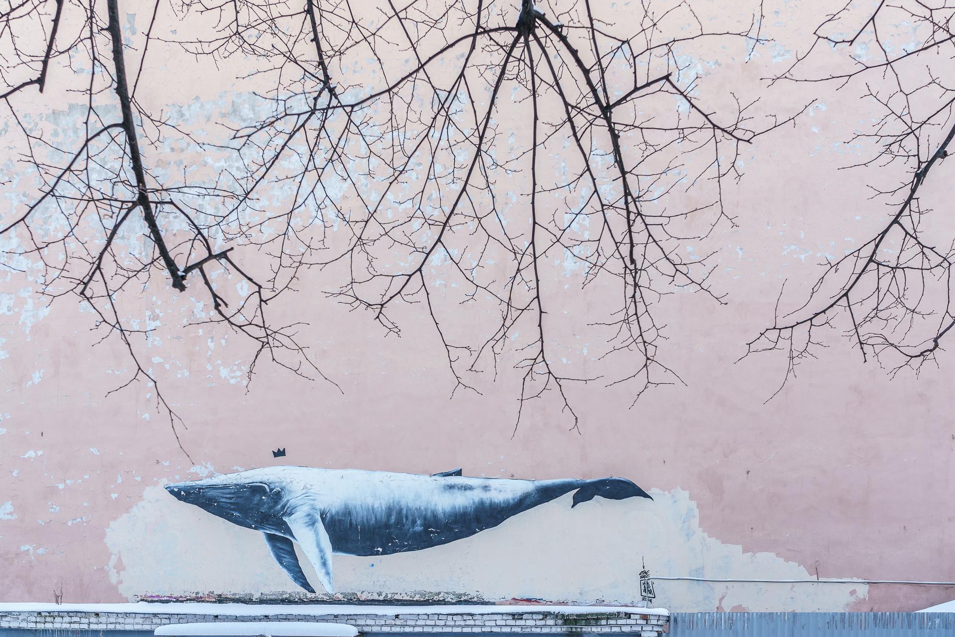 Street-Art-Wal-Sankt-Petersburg