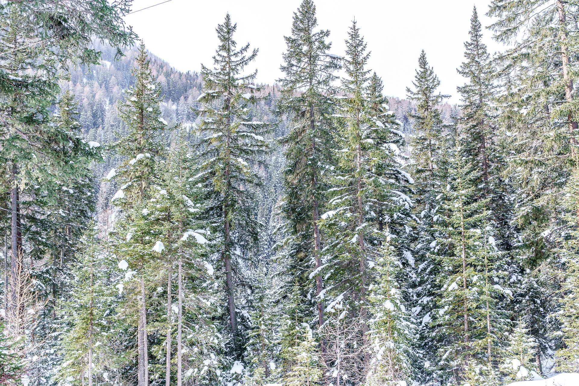 Val-Sinestra-Landschaft