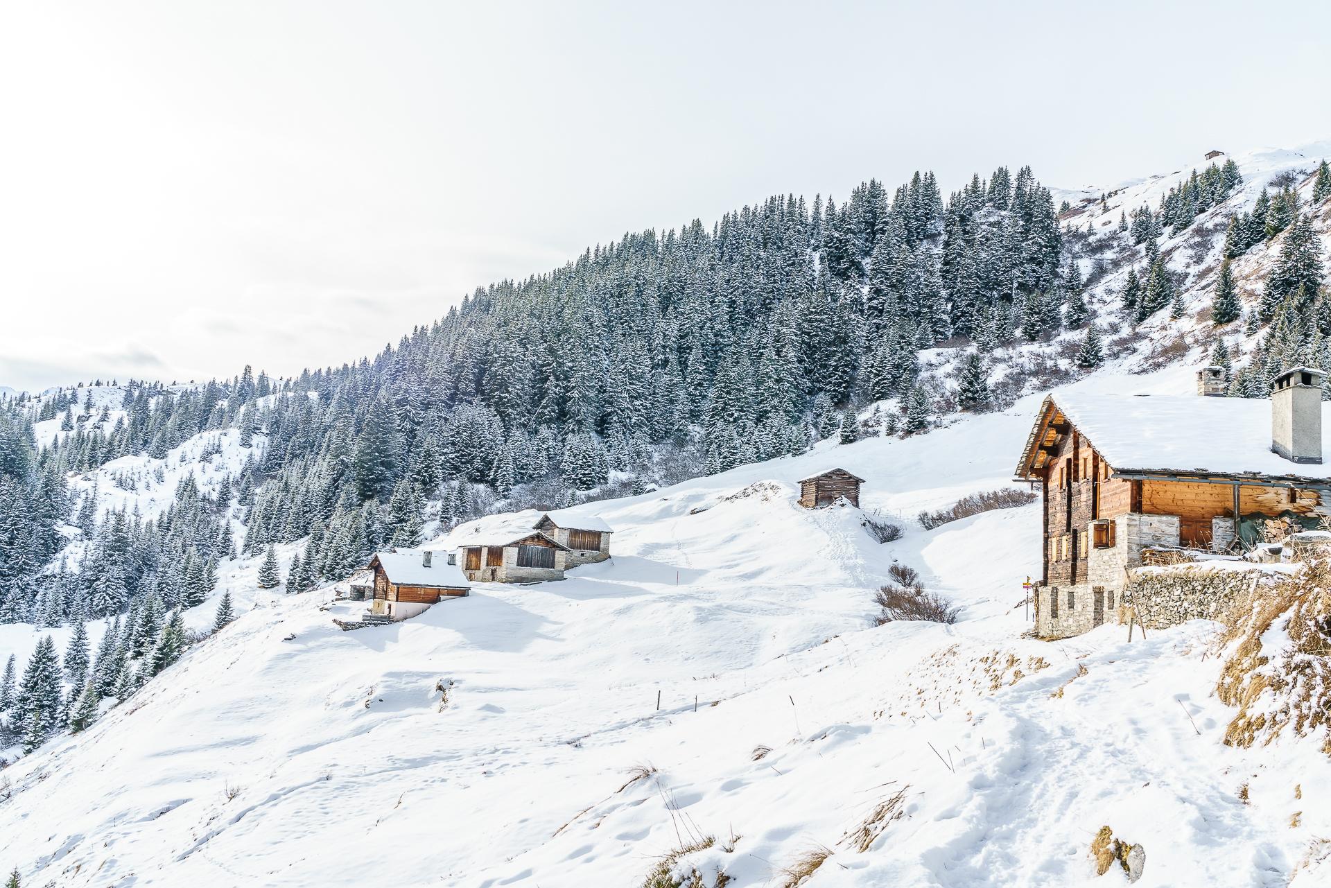 Vals-Winterwandern-Gadastatt-Leis-2