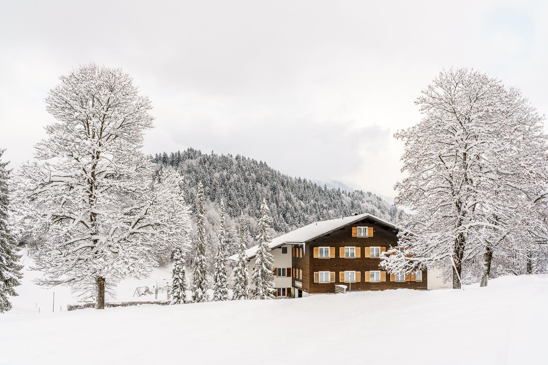 Winter-Latschau