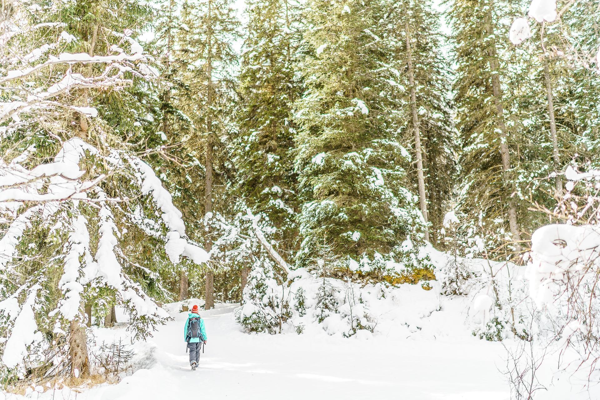 Winterwandern-Val-Sinestra