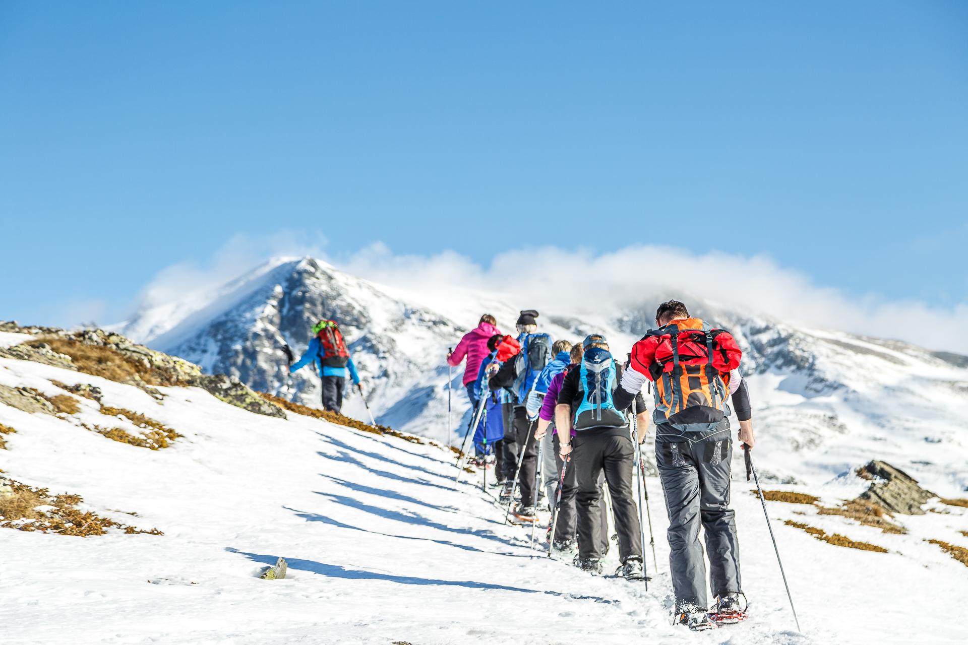 Gefuehrte-Schneeschuhtour-Visperterminen