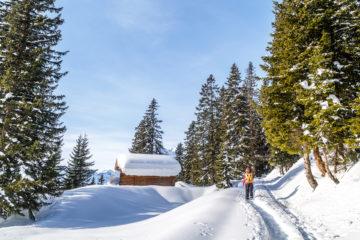 Panorama Winterwanderung Braunwald im Glarnerland