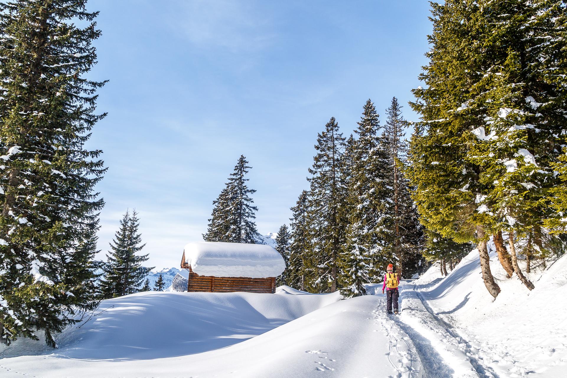 Panoramawinterwanderung-Braunwald-Seblengrat