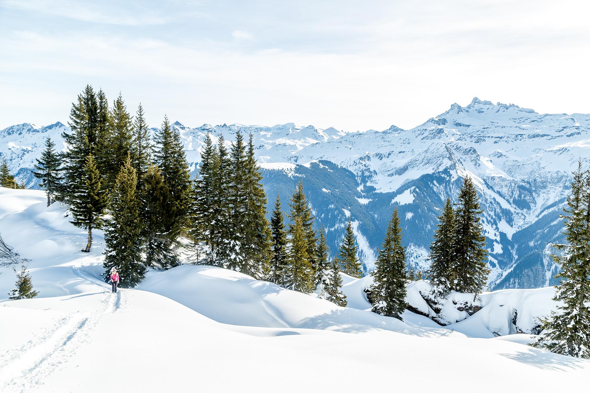 Panorwama-Winterwanderung-Braunwald