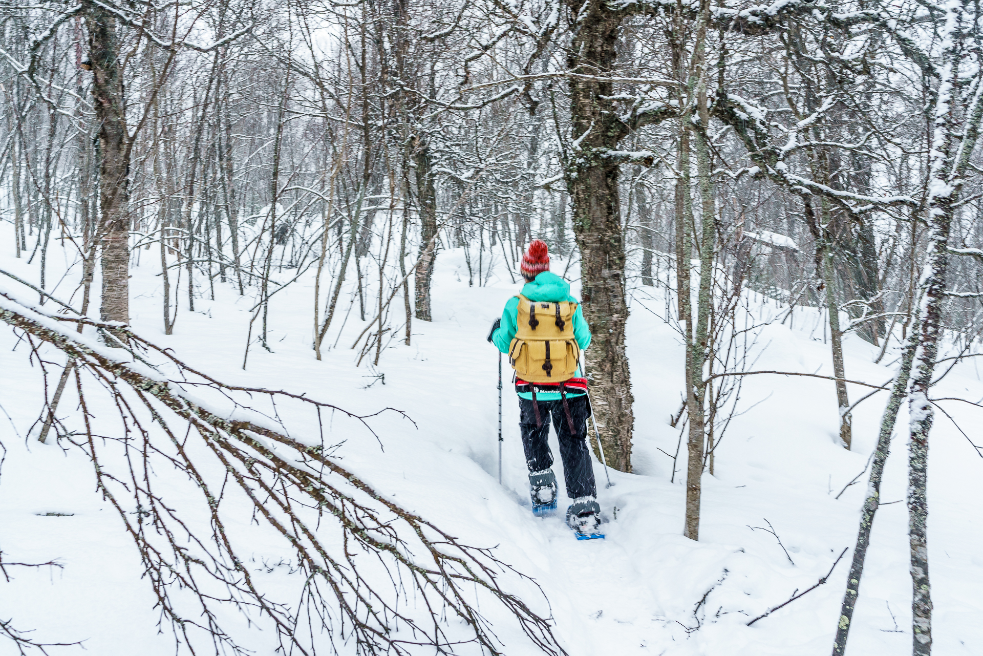 Schneeschuhtour-Fjellheisen-Tromso