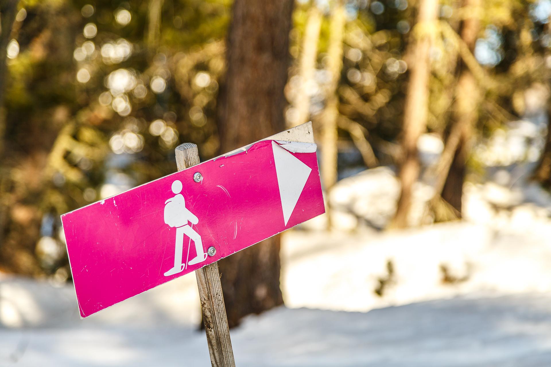 Schneeschuhwandern-Signalisation