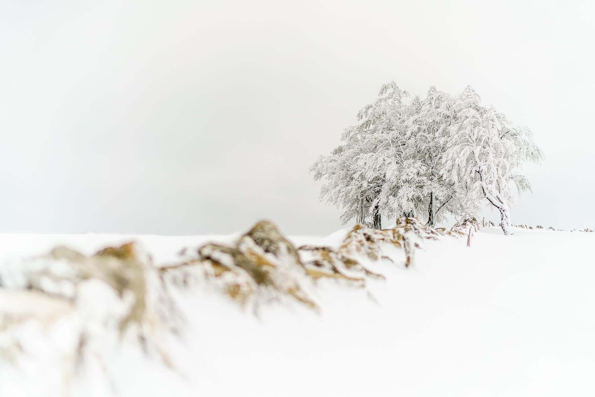Winter-Creux-du-Van