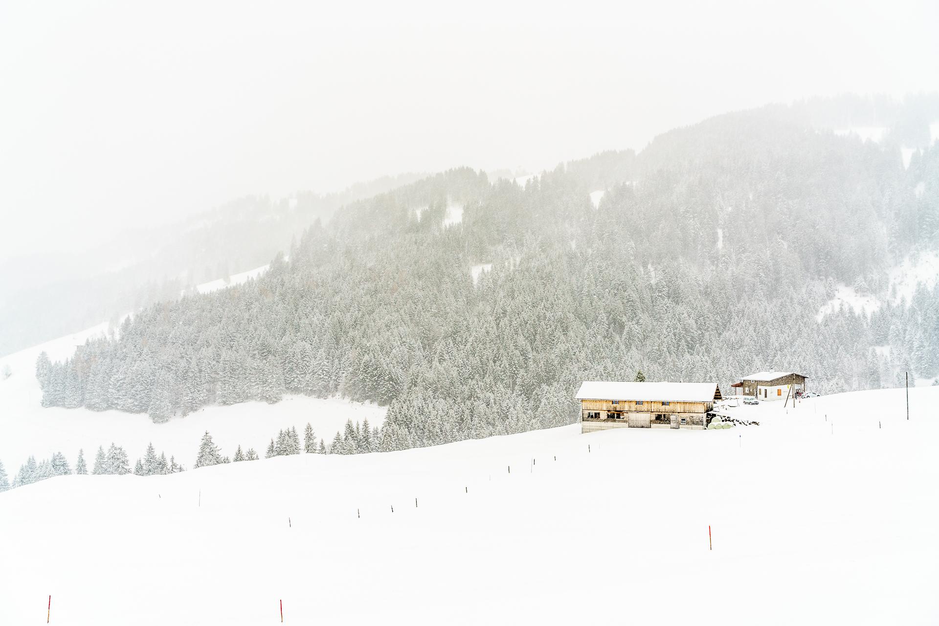 Wirzweli-Winterwanderung