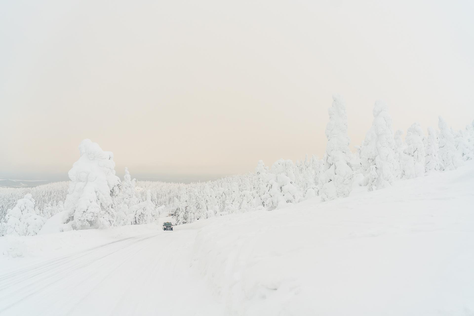 selber jagen schwedisch lappland