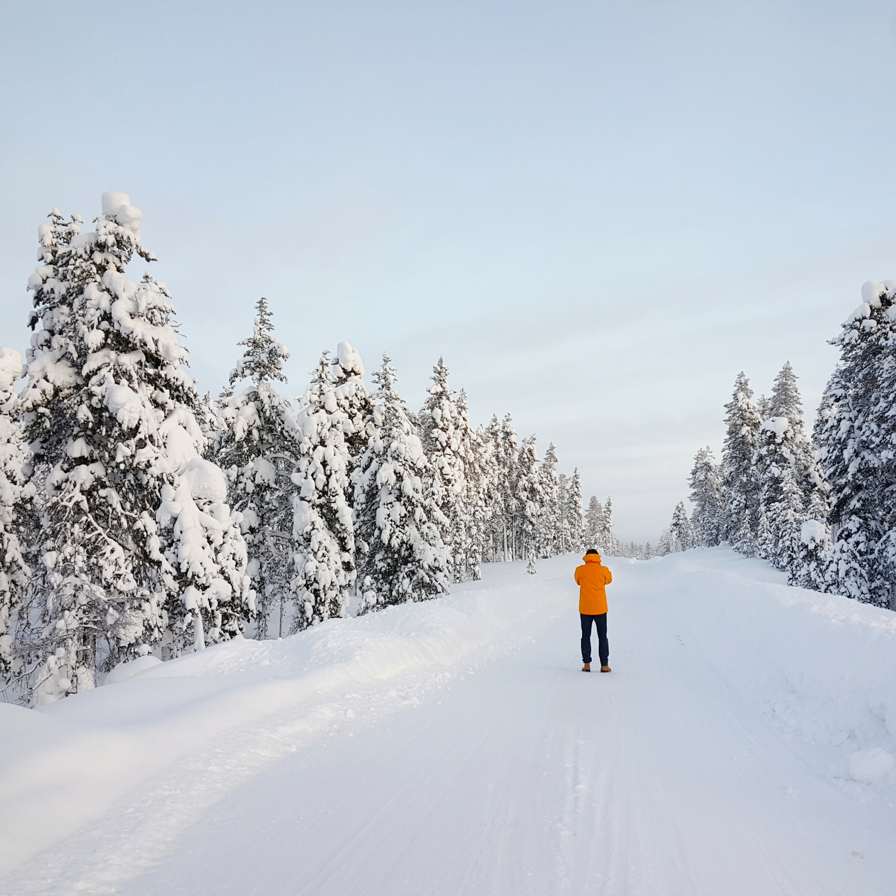 Roads-of-Lapland