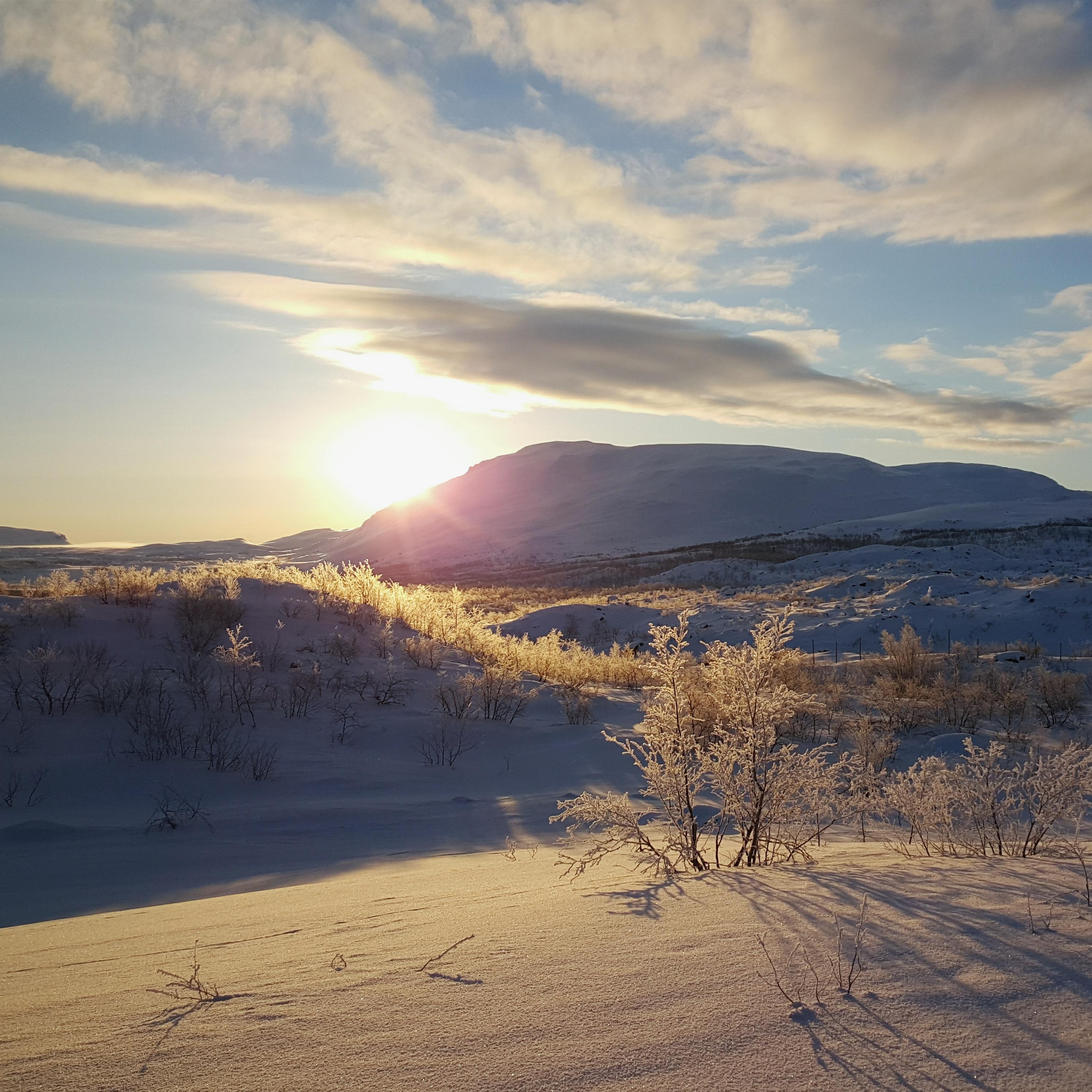 Sunrise-Lappland