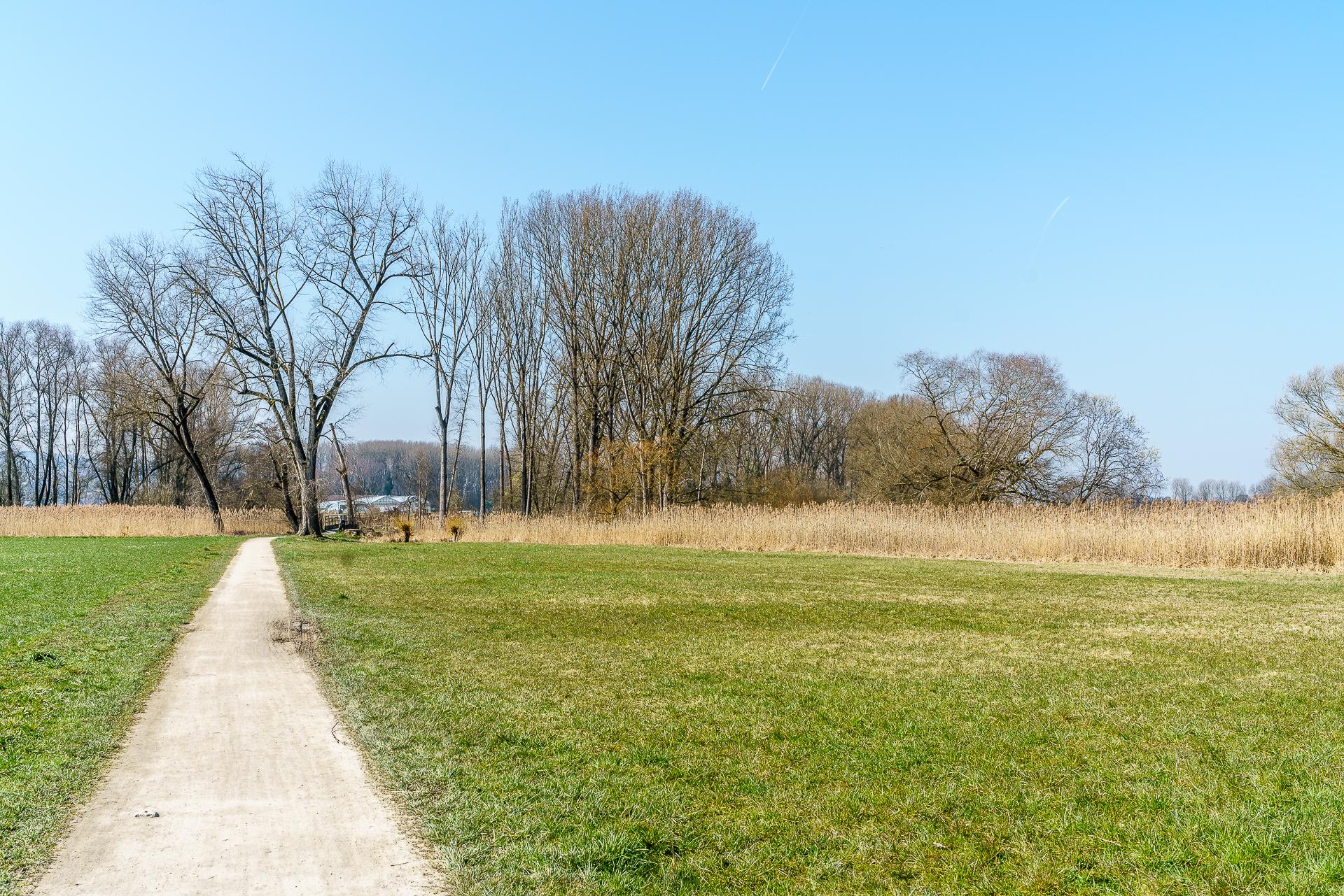 Via-Rhenana-Kreuzlingen-Steckborn