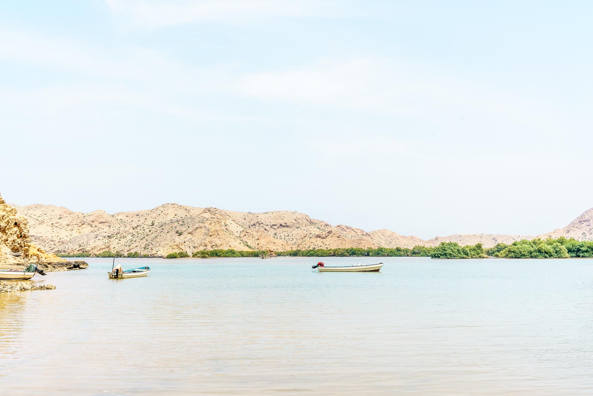 Al-Khiran-mangroven