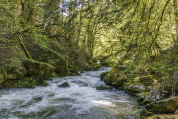 Areuse Schlucht - Wanderung im Jura