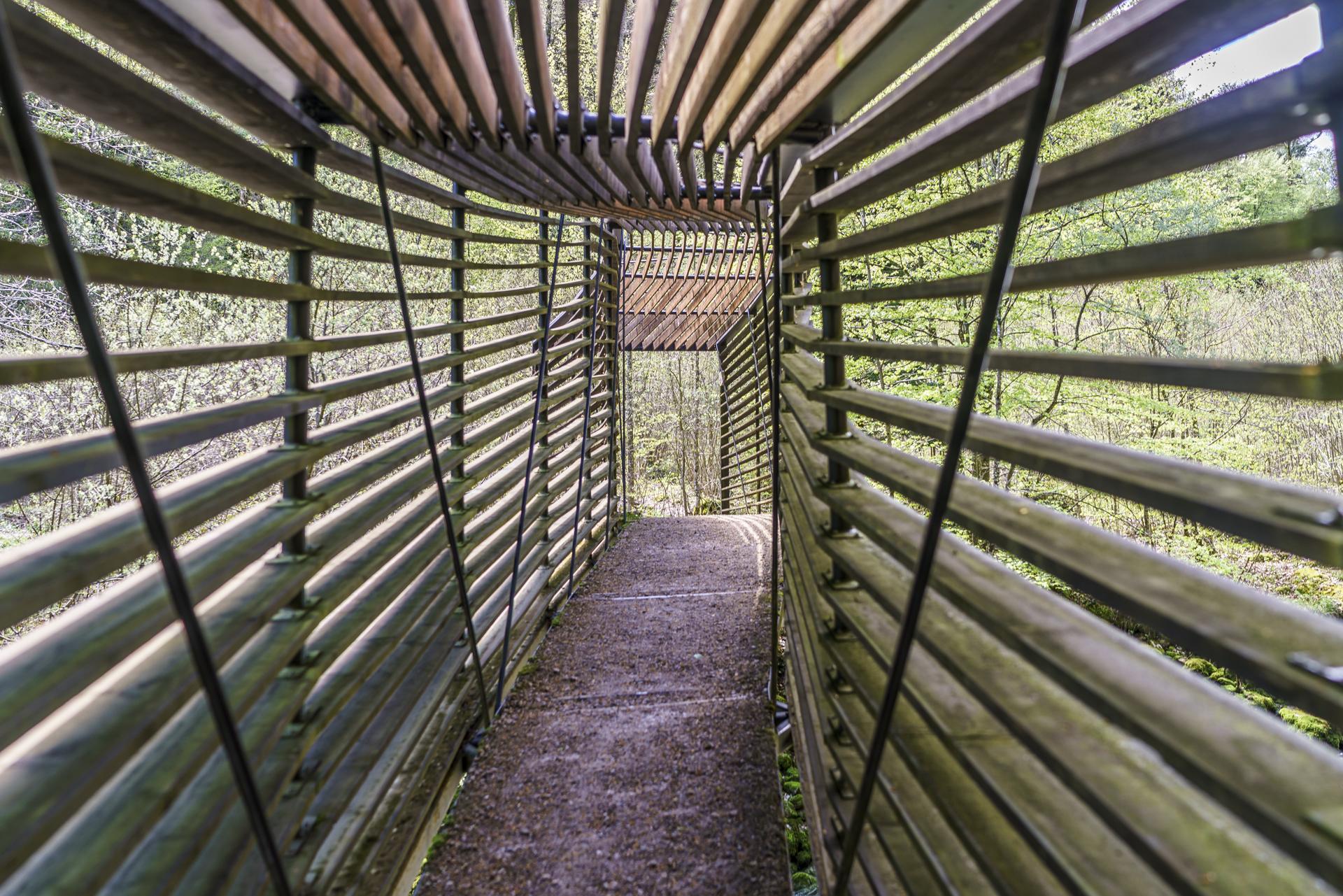 Areuse-Holzbruecke-Wanderweg