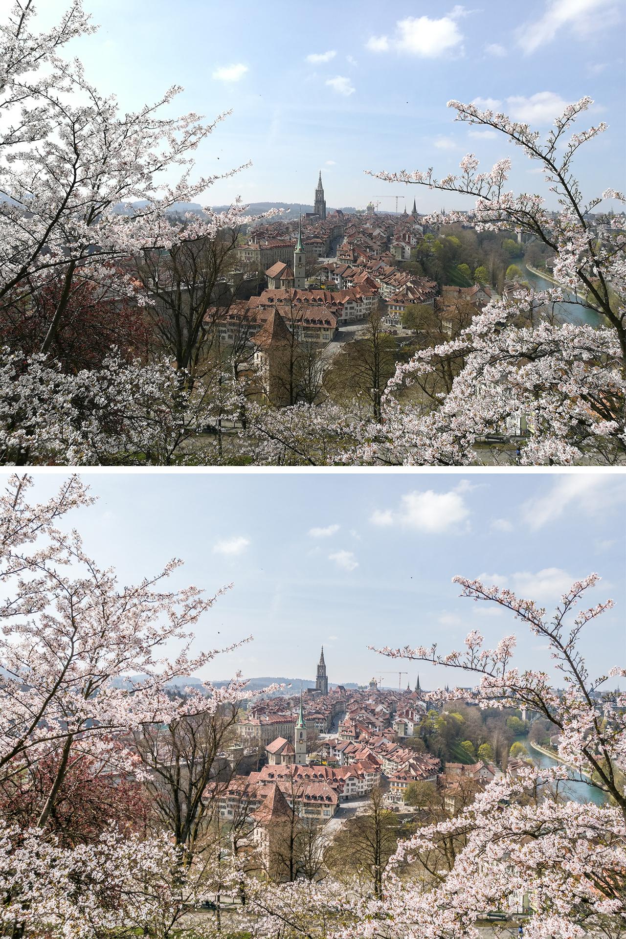Huawei-p9-Testbild-Bern-Rosengarten-vergleich