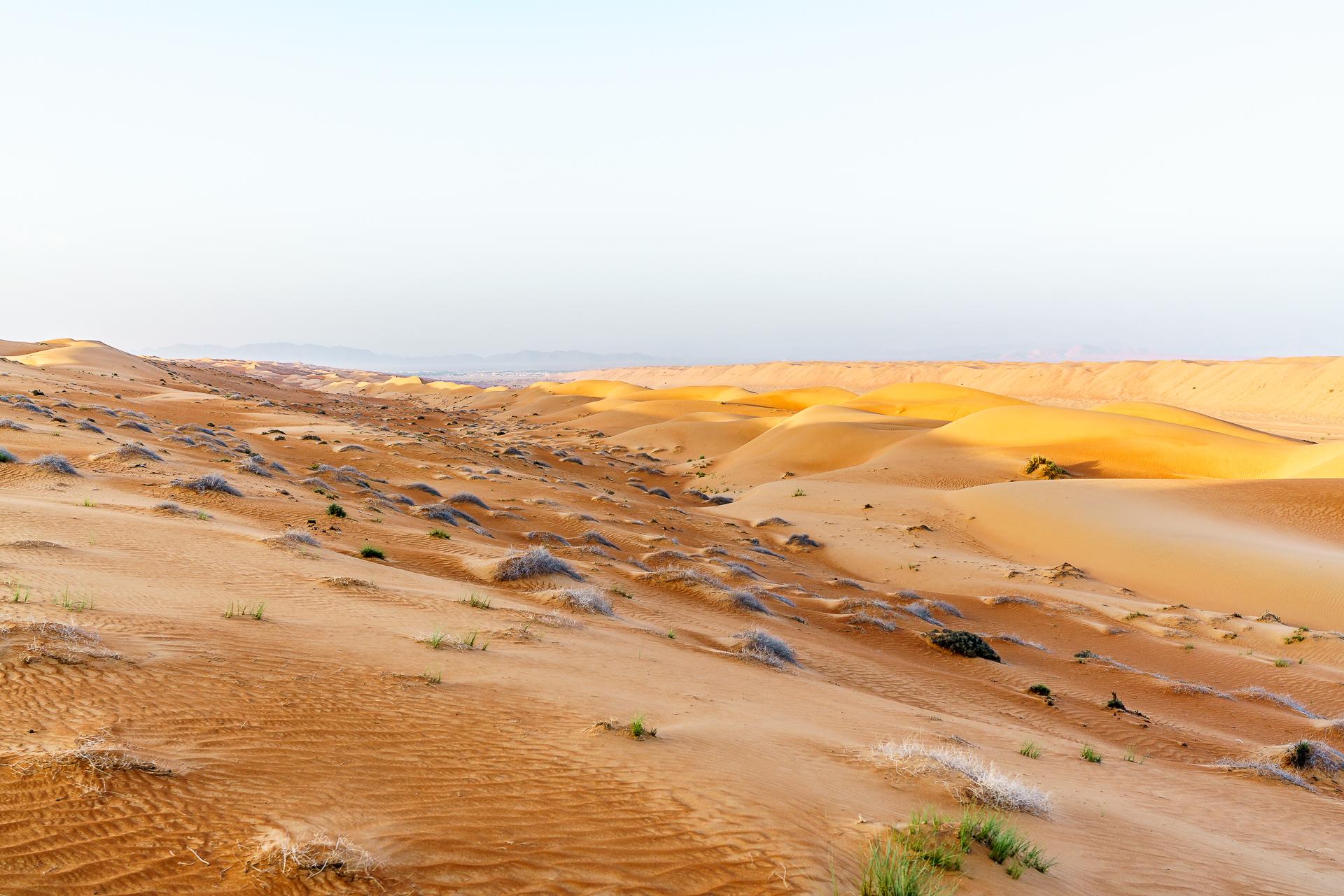 Oman-Wueste
