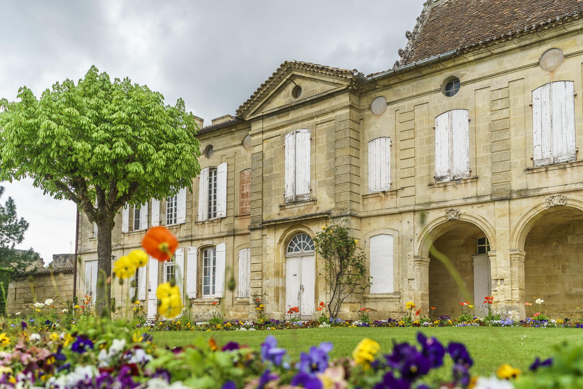 Saint-Emilion-Weintour-2