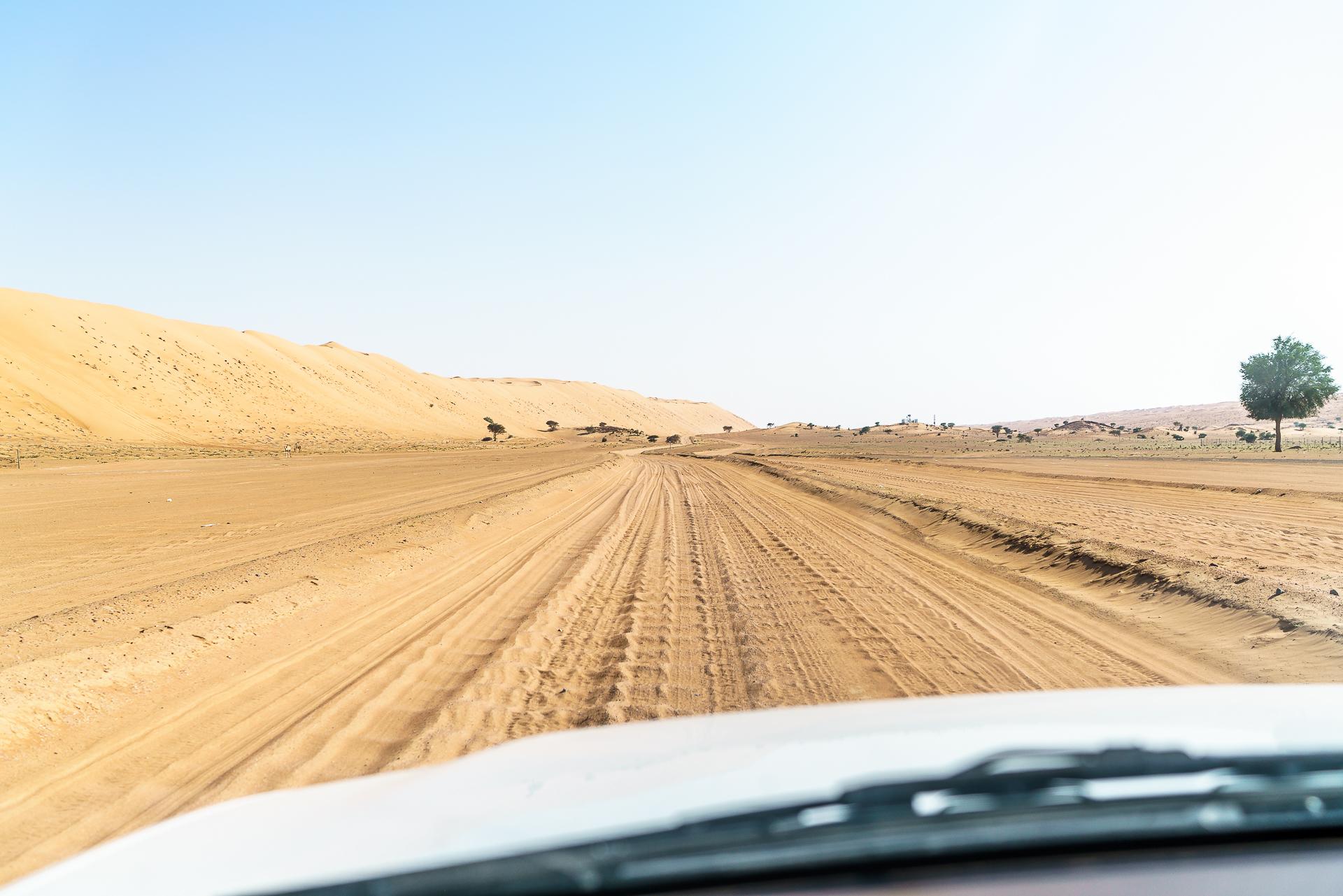 offroad-wueste-selbstfahrer
