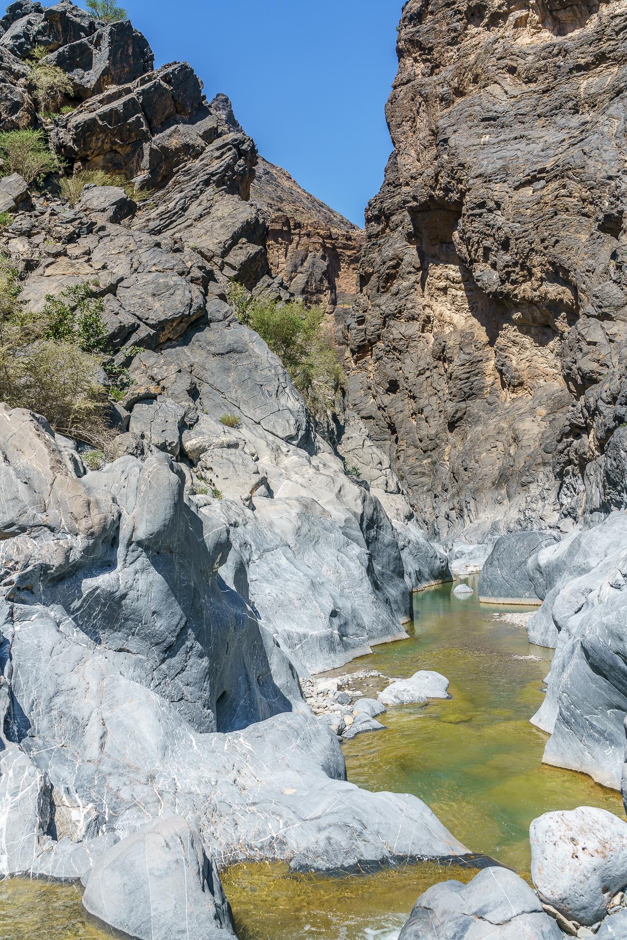 snake-gorge-wadi-bani-awf