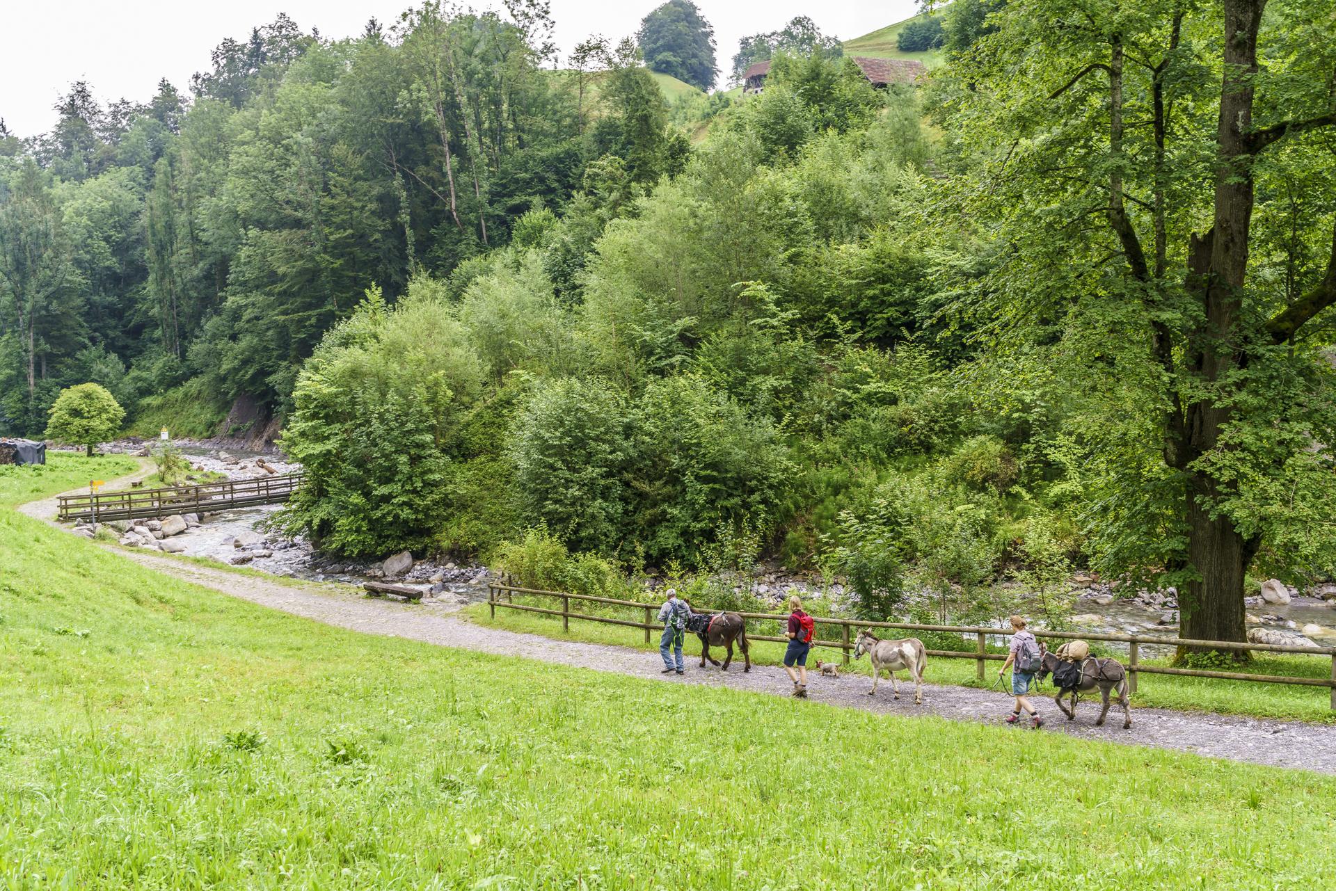 Eseltrekking-Obwalden