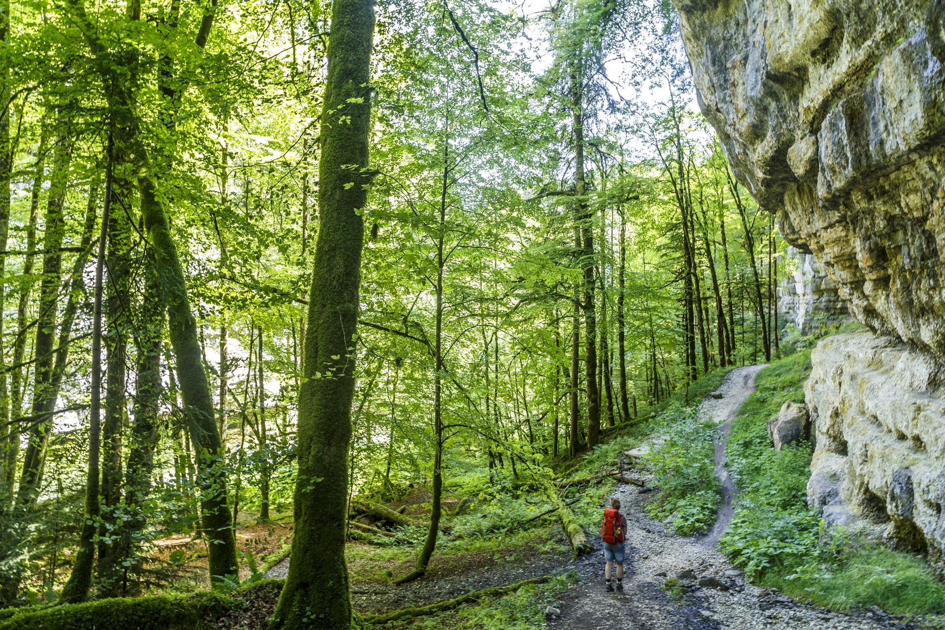 Fil-de-Doubs-Neuenburg