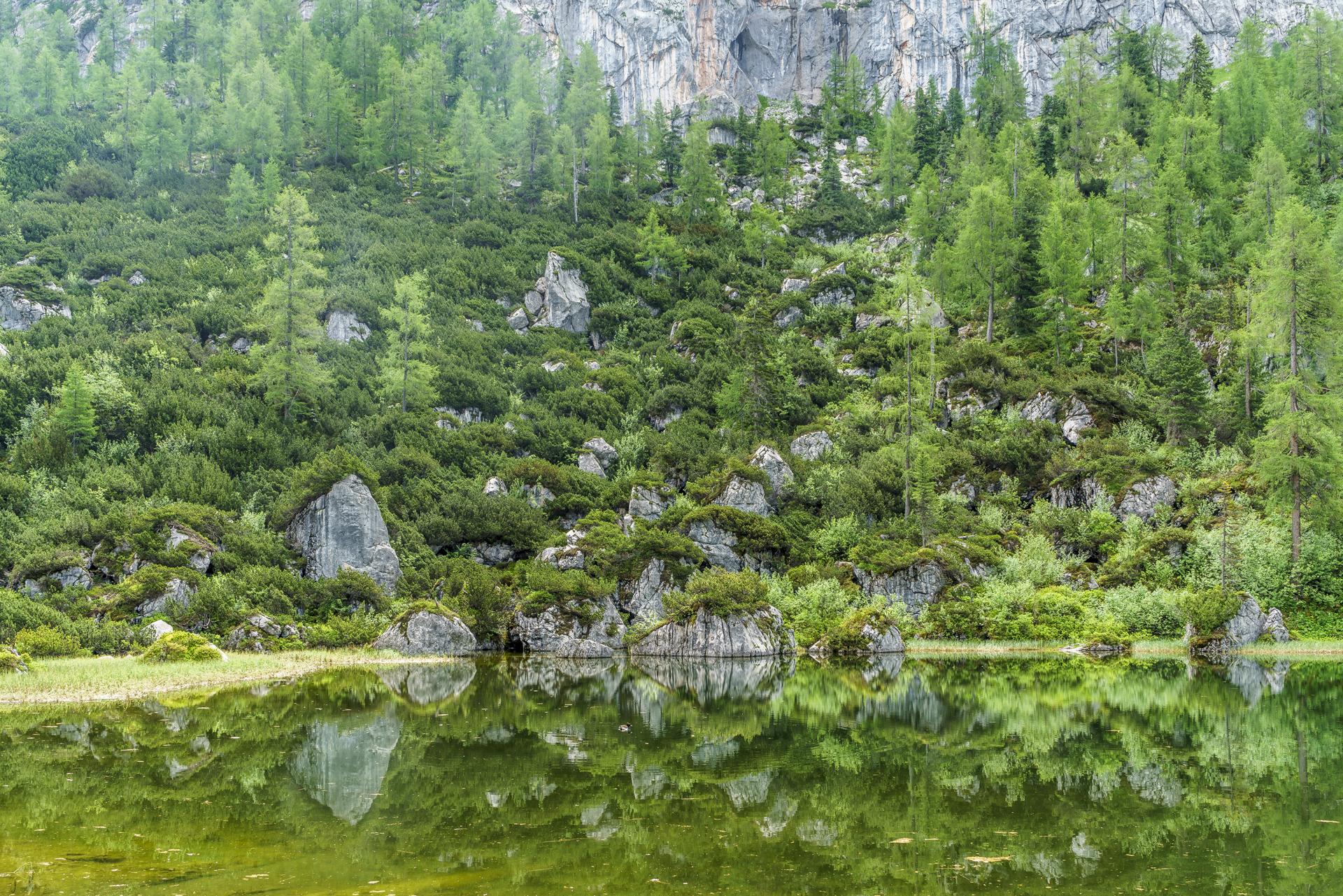 Schwarzsee-Grosse-Reibn-Berchtesgaden