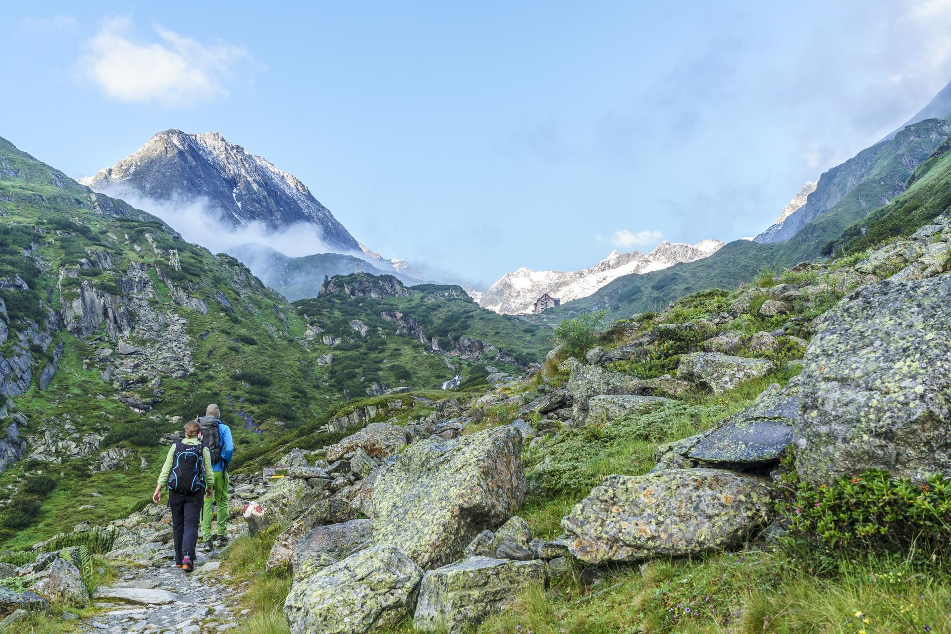 Wanderweg-Alpein-Alm