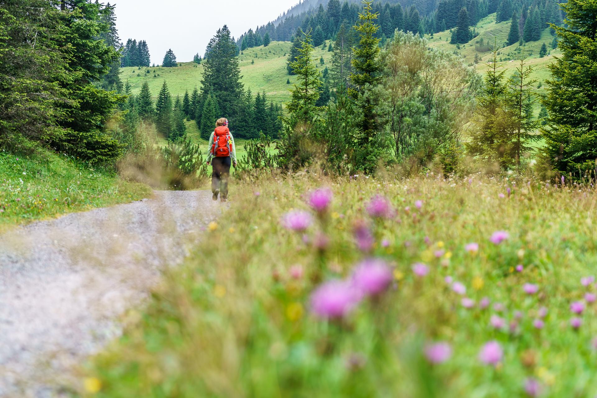Lechweg-Vorarlberg-Wanderung