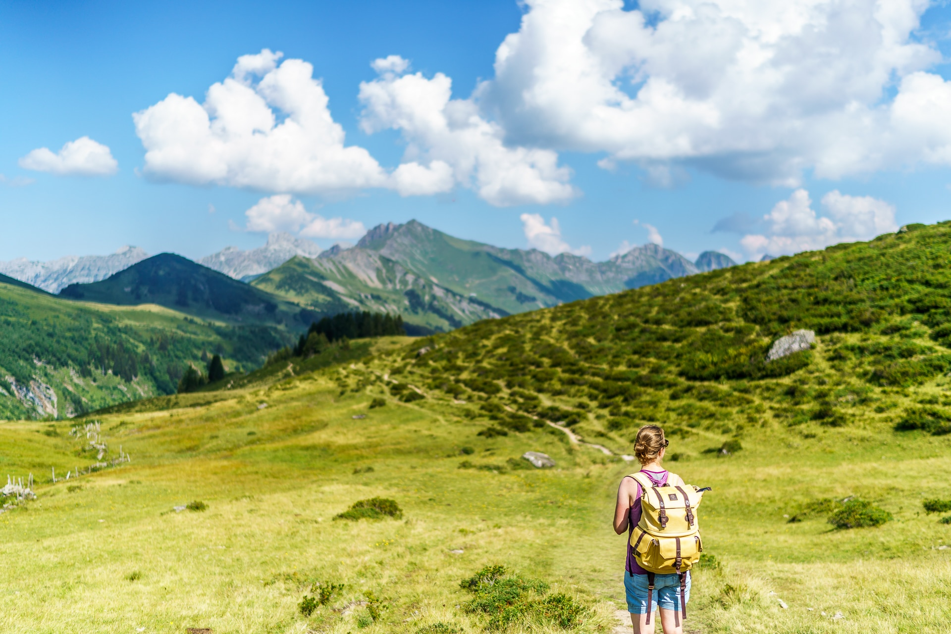 Wanderweg-Col-du-Pillon-Arnensee