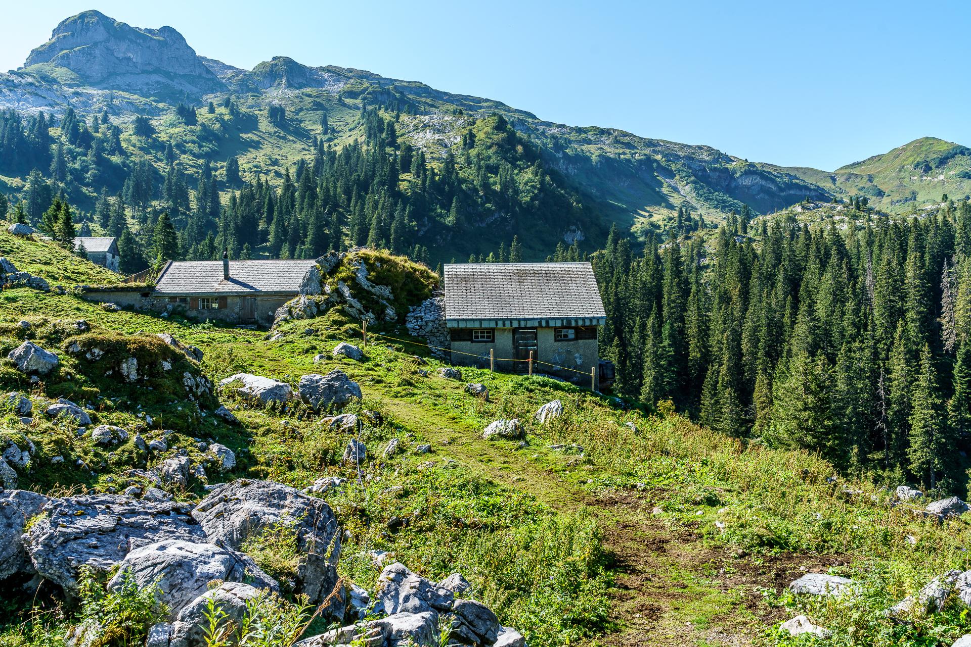spanegg-alp